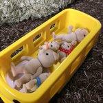 ママもびっくり!子どもの遊び方が残酷!