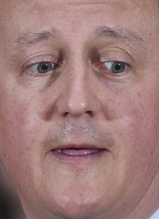 Enjoy this picture of @David_Cameron looking like a joint of ham that's grown a face https://t.co/YFrXN07RN2