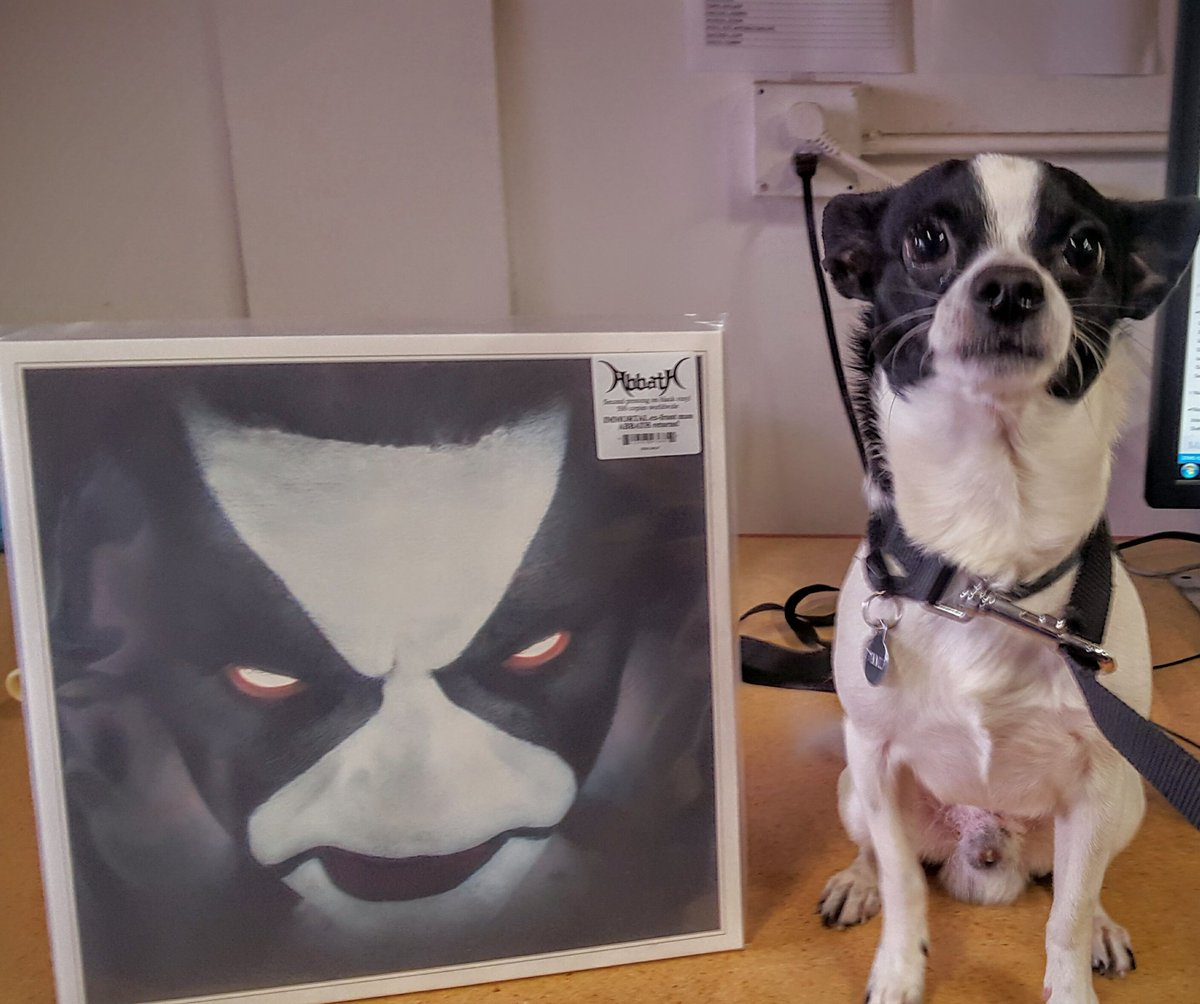 Our intern today @nuclearblastusa ! Dimmu the Dog! He loves Black Metal. https://t.co/wXMlP9AG0K