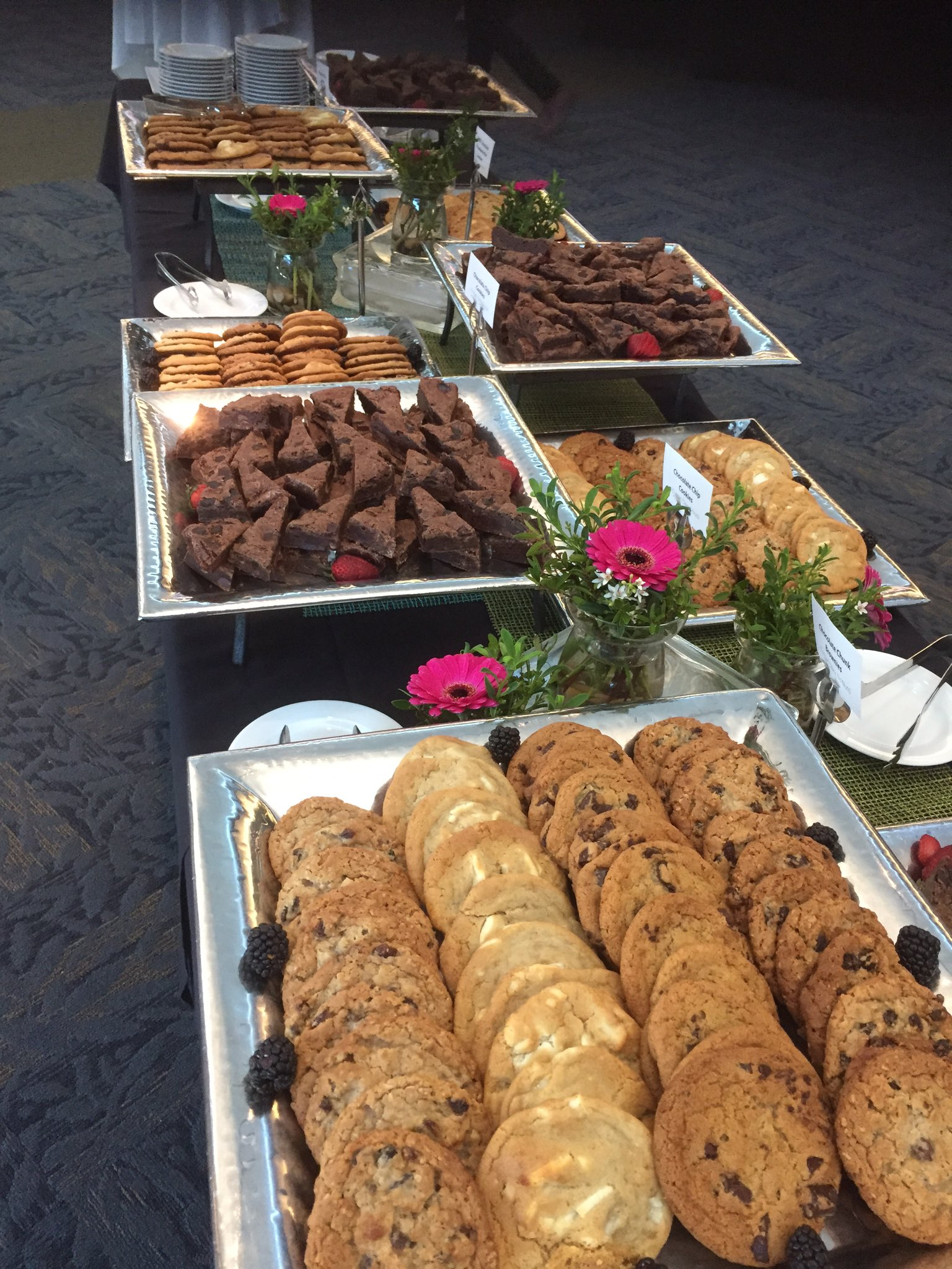 Coffee break at #isrii8. I need a behavior change intervention to resist. Or maybe the organizers do https://t.co/6yjQdtIq2k