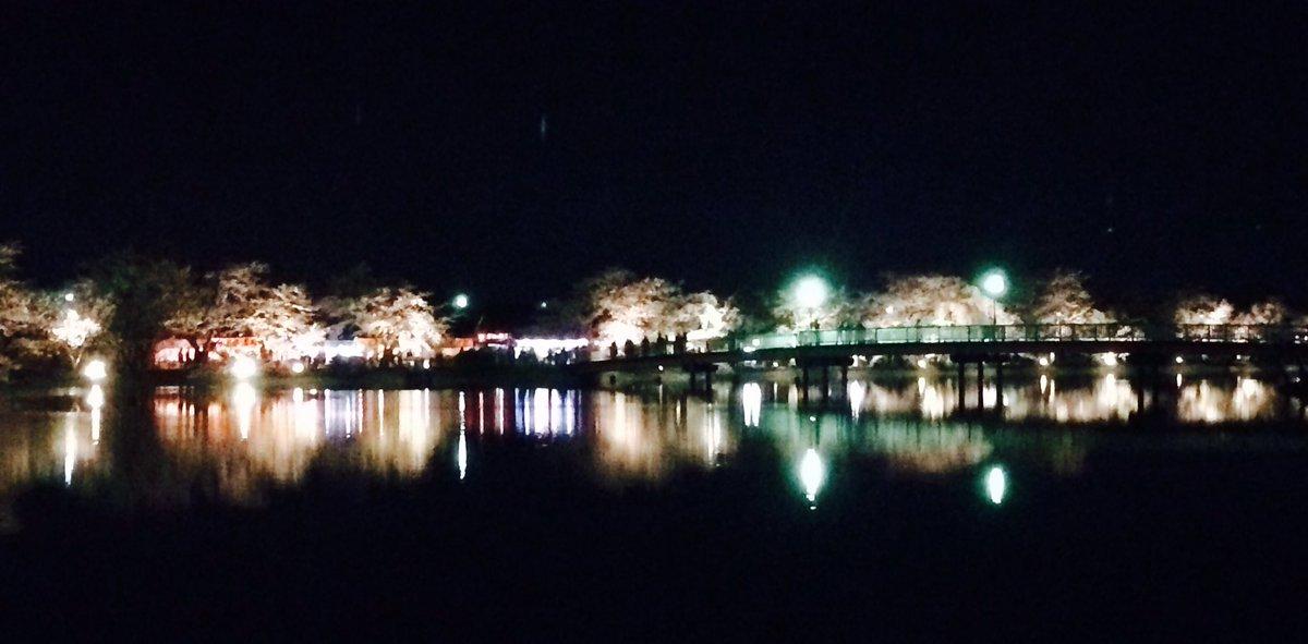 さくらの名所100選 信州須坂・臥竜公園のさくら ライトアップ調整中です。 明日4月9日(土)18時から 22時までさくらの花の見頃期間中、ライトアップを行います。 夜桜キレイですよ