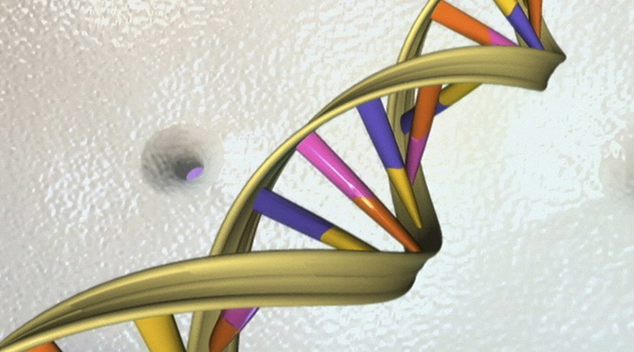 Biochemists watch gene expression in real time - study