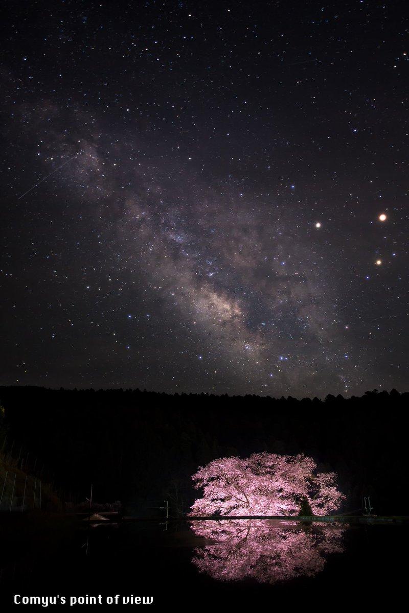 """「銀河を背負いし」  2016/4/9 奈良県宇陀市""""諸木野の桜""""(別名""""牛繋ぎの桜"""")にて撮影  予報に反して晴れとなり、こうして狙い通り天の川と桜を同時に収める事が出来て幸運でした!  #東京カメラ部 #Nikon #VOiCE https://t.co/5yxAuhGSSH"""