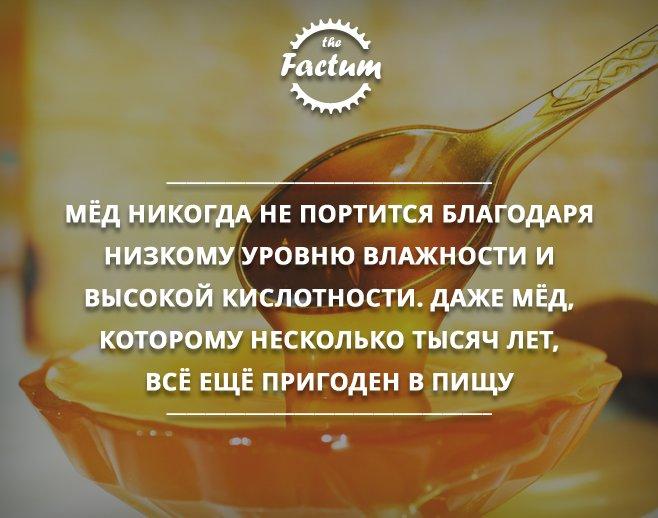 мёд никогда не портится книги
