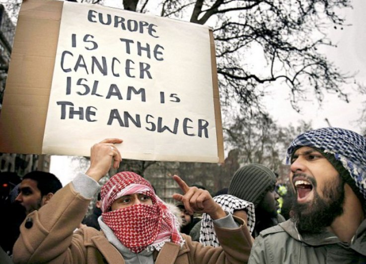 Image result for europe is the cancer islam is the answer