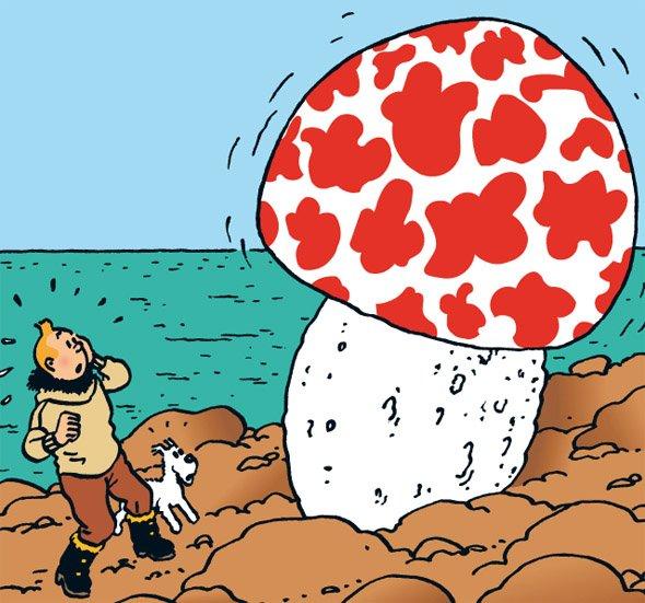 Pero… ¿Los hongos son microorganismos? ¡El ser vivo más grande conocido es un hongo! #MicroMOOCSEM https://t.co/UzdnX3Qwze