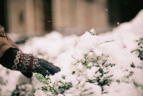On Twitter Dear Winter I Miss You Https T Co Zd8qzm9n6m Haddaway haddaway i miss you. dear winter i miss you https t co