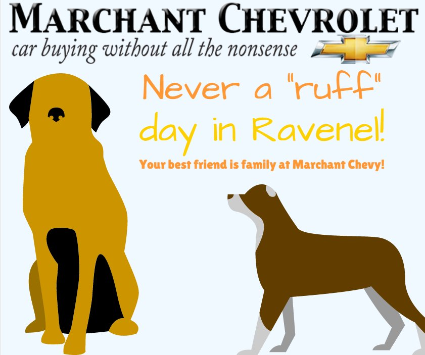 Marchant Chevrolet On Twitter Never A Ruff Day In Ravenel