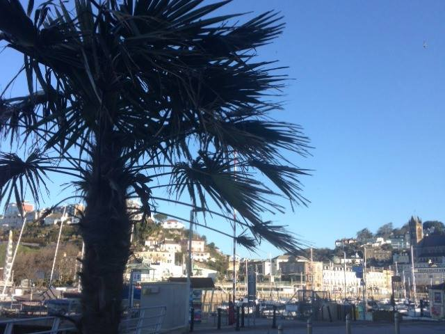 Torquay is looking stunning today. Come and see it for yourselves this bank holiday weekend! #englishriviera #Devon https://t.co/CmmdP6NTRe