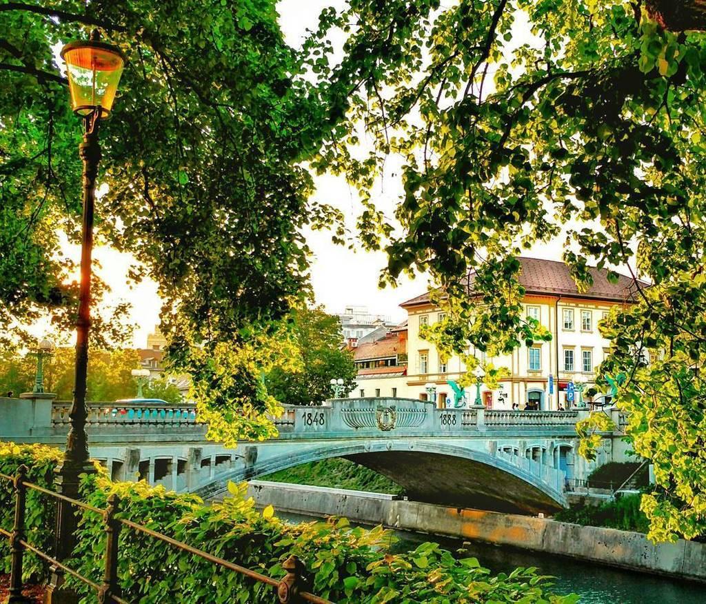 🐲Tribute to #got dragons - - > the Dragon bridge in Ljubljana. 🐉  #dragonbridge  #phonephotography #phone #gameofth… https://t.co/0gTZEiIgCB