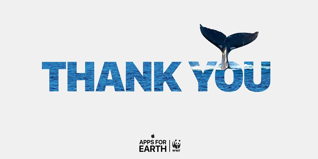 We can't thank you enough for being part of #AppsforEarth and buying #TurtleTraffic to help raise money for @WWF! https://t.co/ppEEWqCfqy
