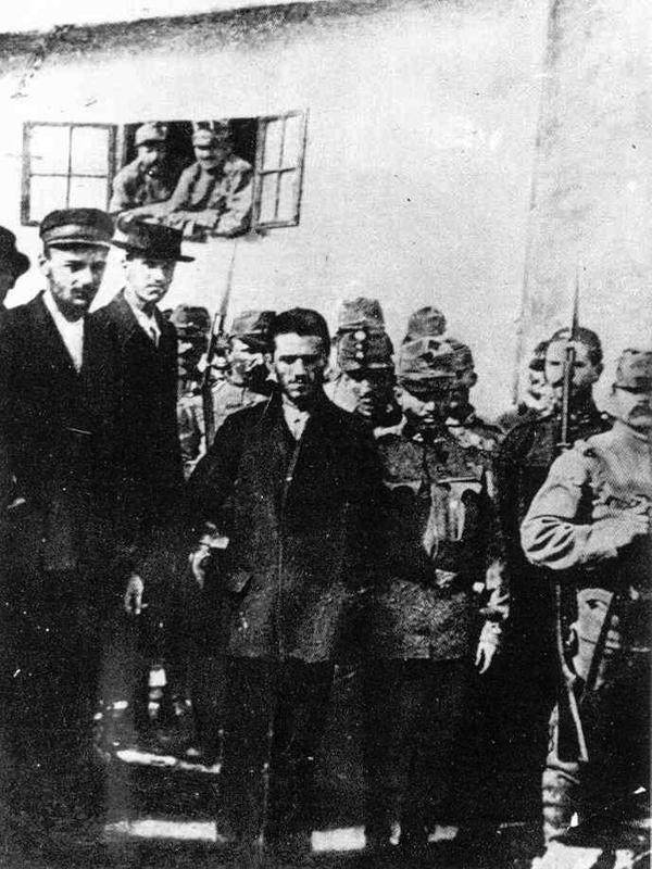 assassination at sarajevo essay