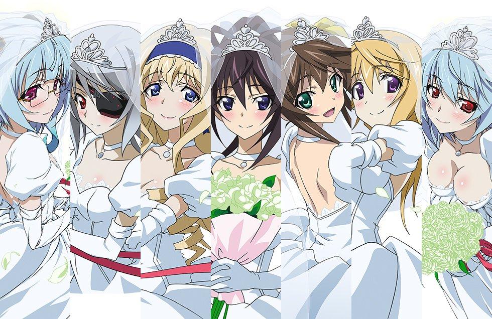 Infinite stratos wedding