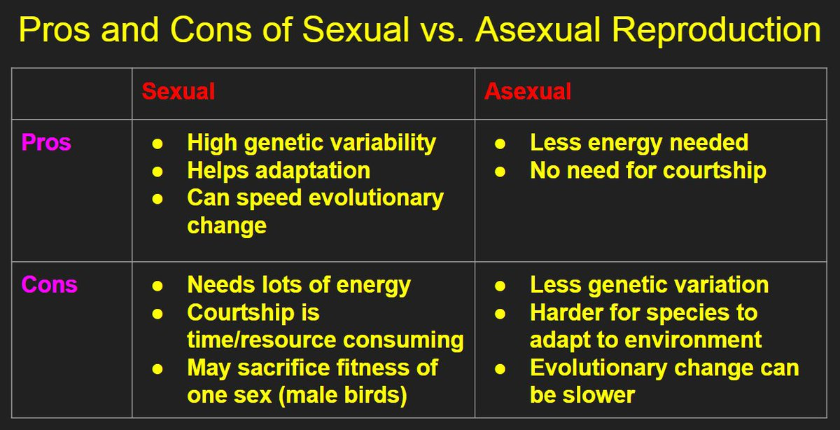 Pros and cons of sex