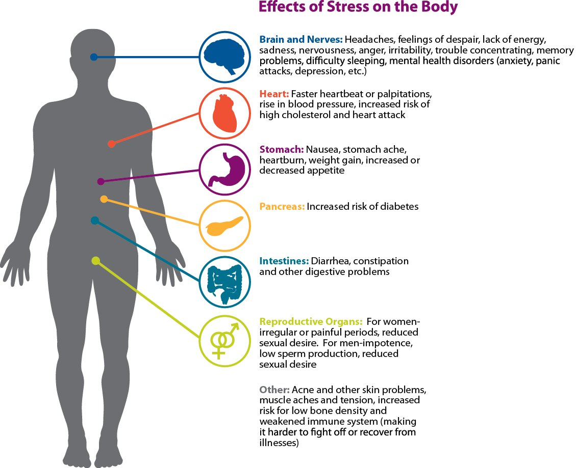 the symptoms of long term effect of stress Read on to find out how stress affects you and how you can gain control your body's response to stress being overwhelmed by technology such as, keeping up with cell phone messages, e-mails, and text messages the long-term effects of stress.