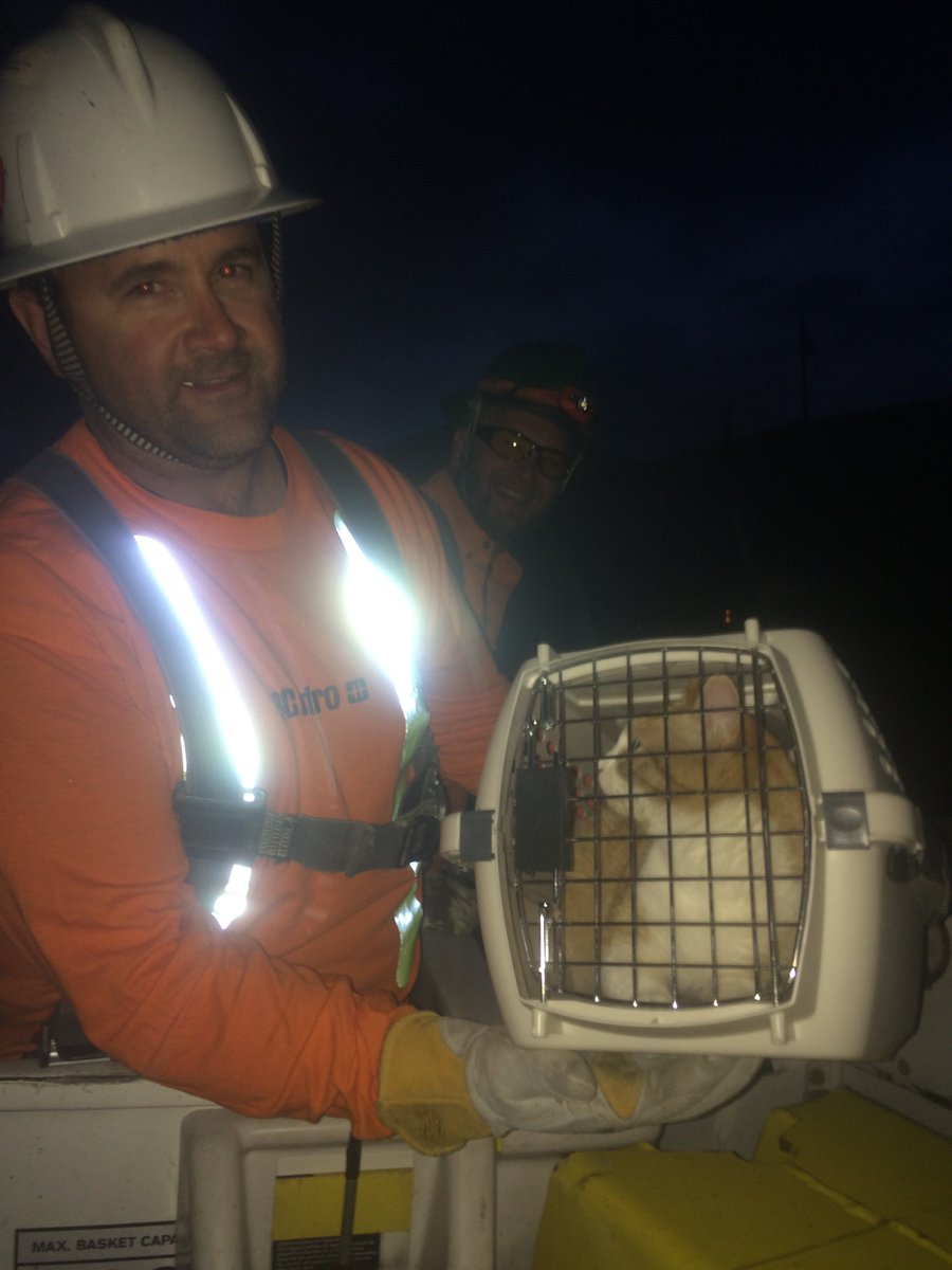 Big thanks to our crews who arrived to #savetheprincetonbccat, now safe & sound with owner. https://t.co/dH6wuFxfqQ