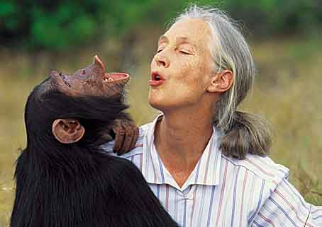 Thumbnail for Living Legend Dr. Jane Goodall Visits T.C. Williams