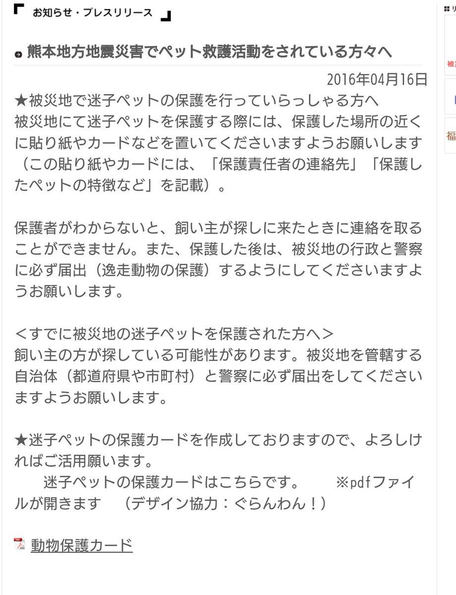 【熊本地方地震災害でペット救護活動をされている方々へ】 (ペット災害対策推進協会HP) https://t.co/IPBuSeGFdK 迷子ペットを保護する際には、保護した場所の近くに貼り紙やカードなどを置いてください #熊本ペット https://t.co/I1kIUiMgYJ