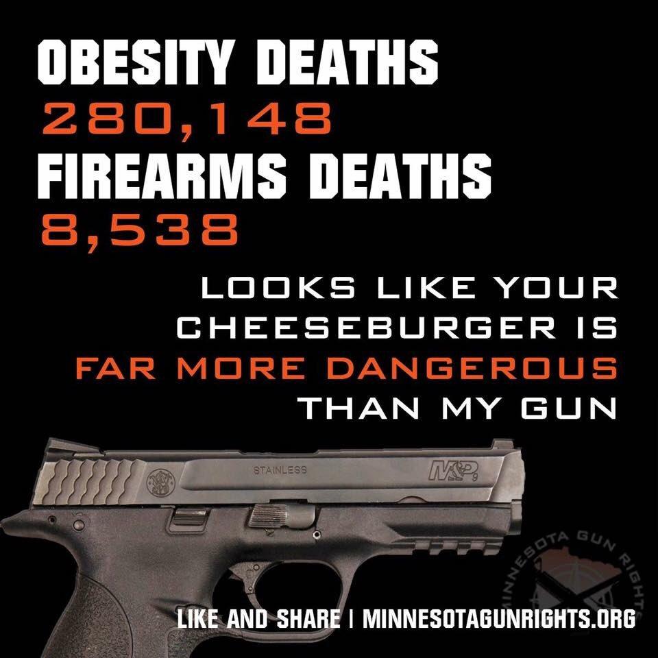 the necessity of gun regulations