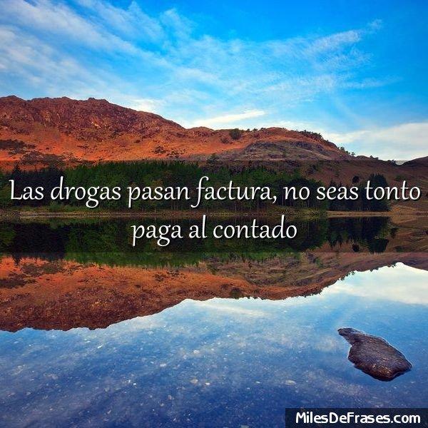 Frases Para Ti On Twitter Las Drogas Pasan Factura No