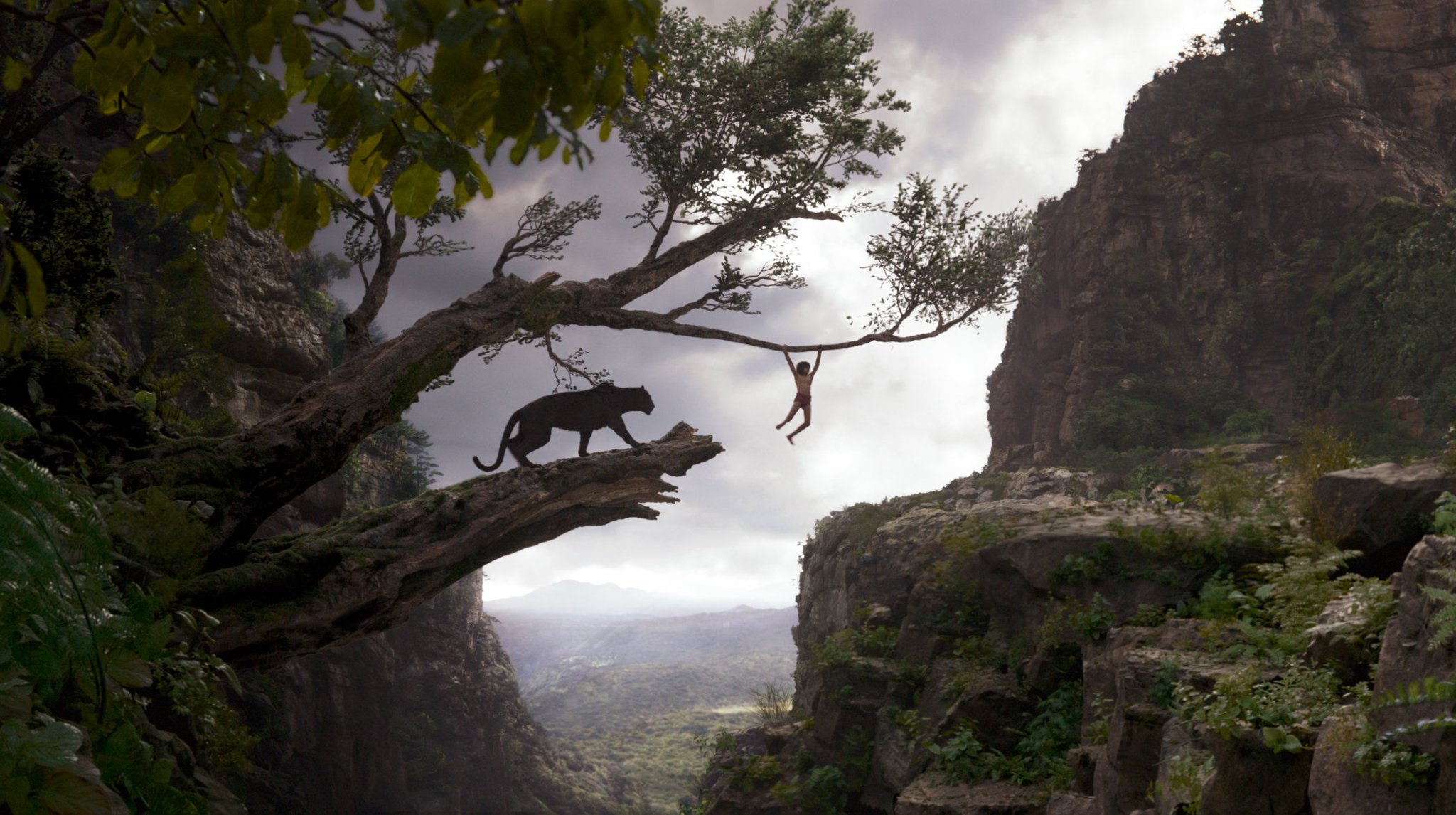 The Jungle Book Box Office Figures 1