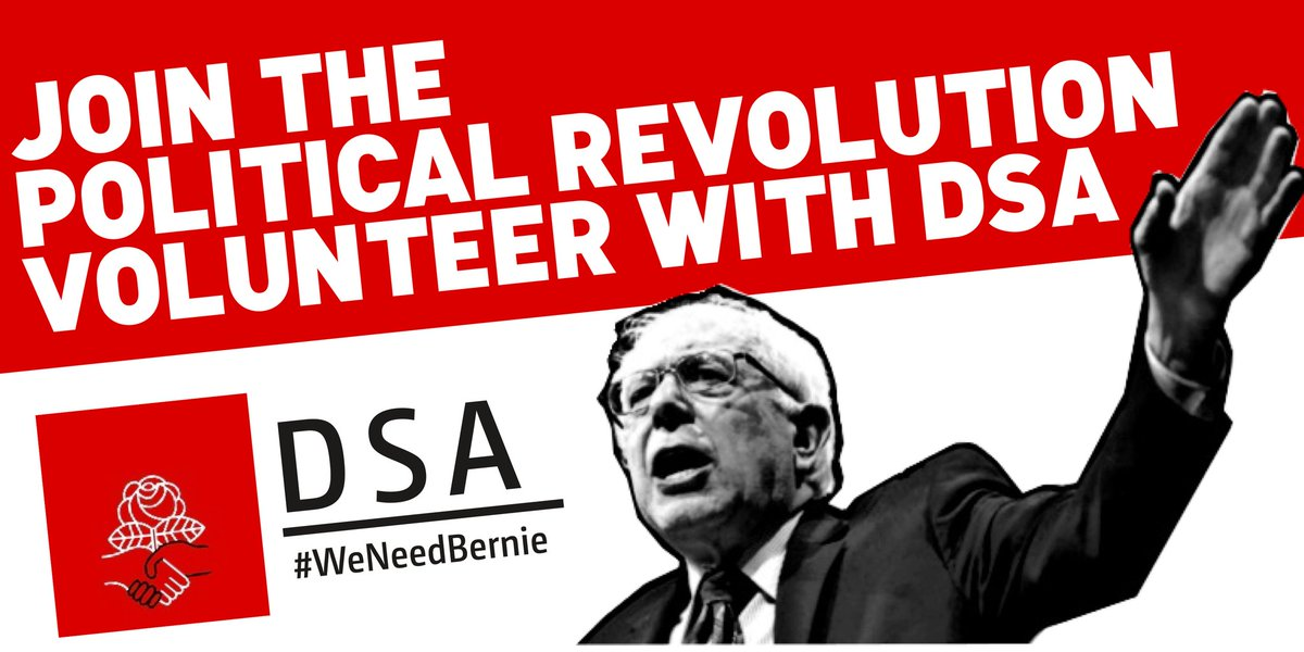 Image result for democratic party socialist