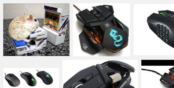 "I laugh my ass off every time I google ""best gaming mouse"" https://t.co/z0J8GR3WTE"