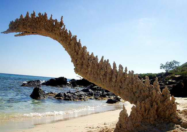 """☀Metalert Ireland☀ Wear a Mask on Twitter: """"A """"Fulgarite"""" the product of lightning hitting sand. Basically superheated sand turning into a form of glass. #jazus… """""""
