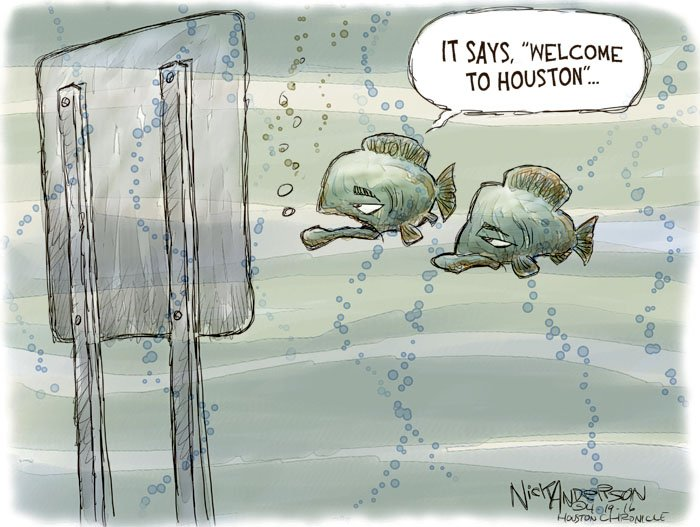 Image result for Houston flood cartoon