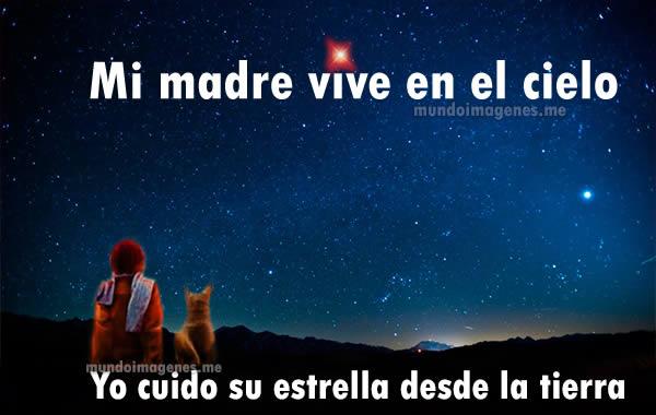 Mundo Imagenes On Twitter Imagenes Para Dedicar A Una Madre