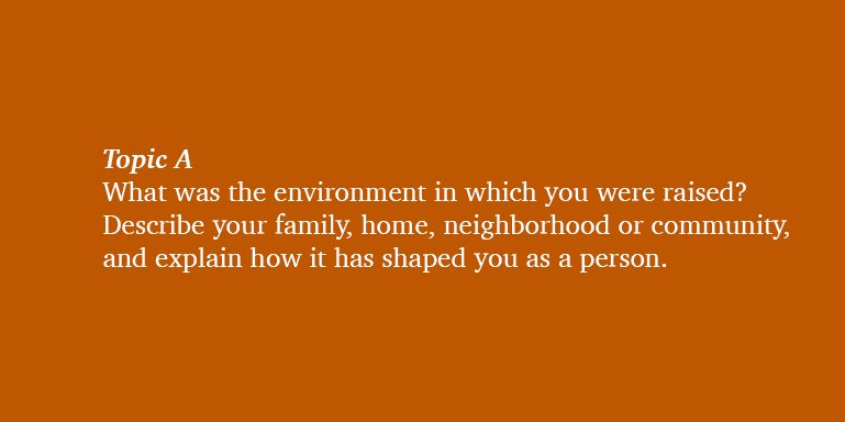 describe the environment in which you were raised essay
