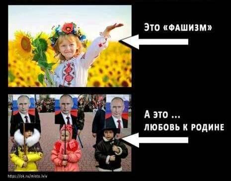 Россия запретила ввозить баклажаны из Турции - Цензор.НЕТ 2666