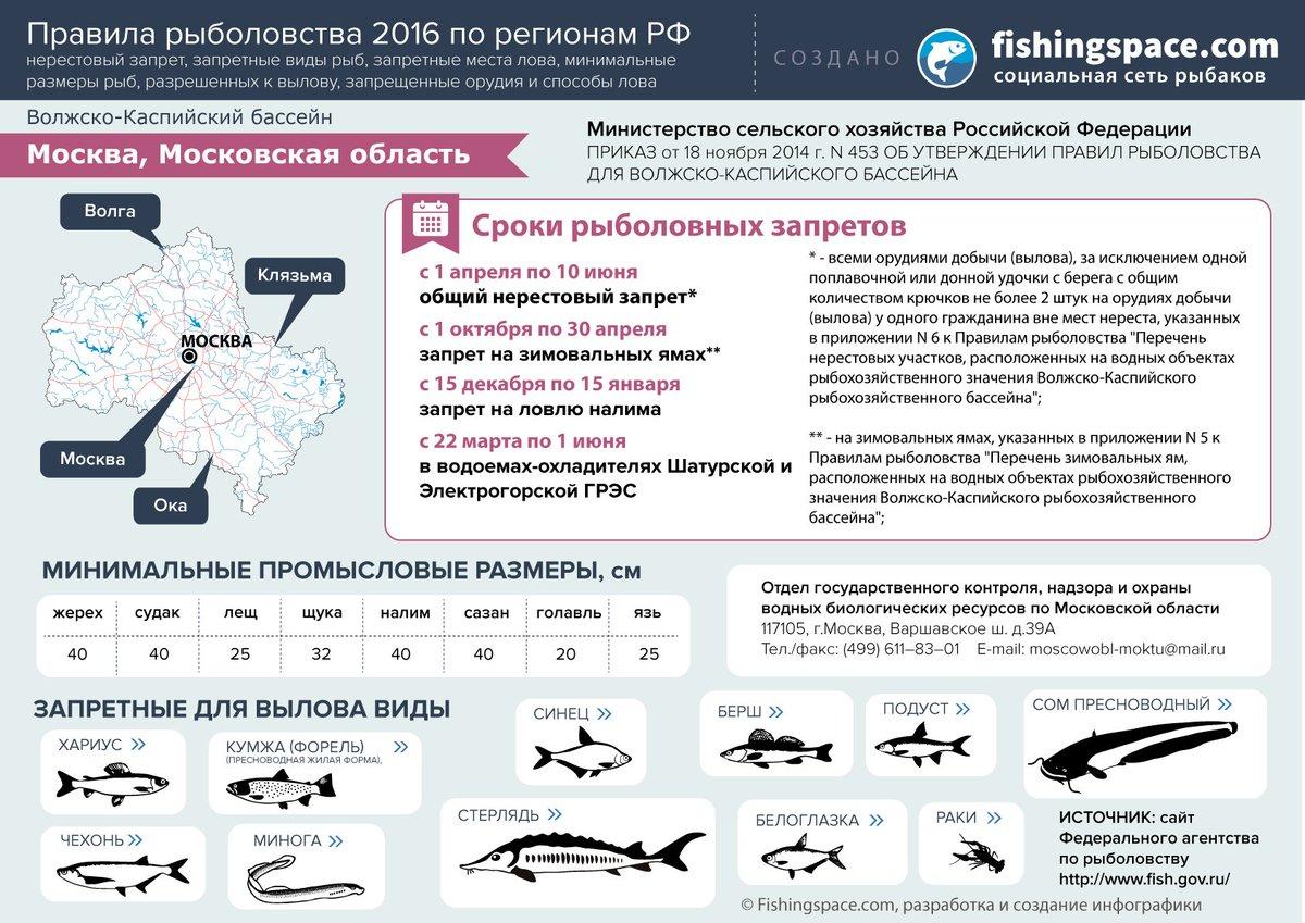Рыбалка запрещенными снастями в «нерестовый запрет», или ловля в местах определенных как нерестилища, сумма штрафа может составить до тыс.