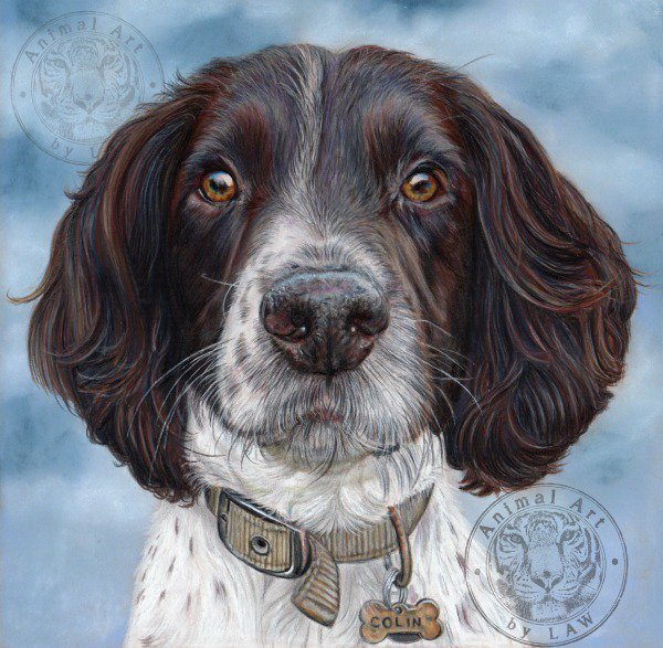 Lisa Watkins tweeted, latest pencil pet portrait completed today.