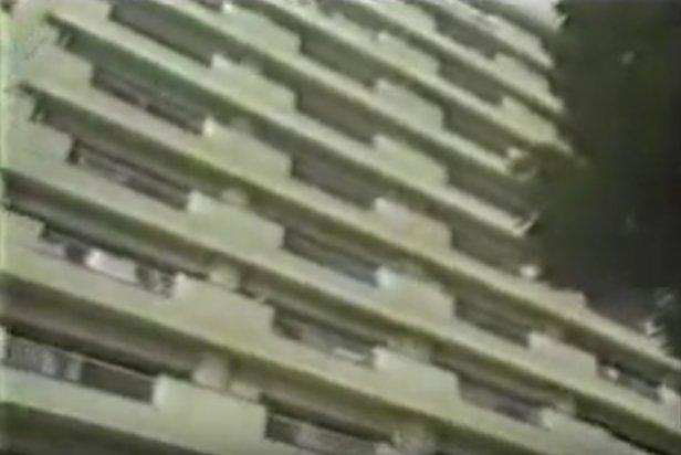 屋 ケン ディズニーランド 洗濯 ちゃん