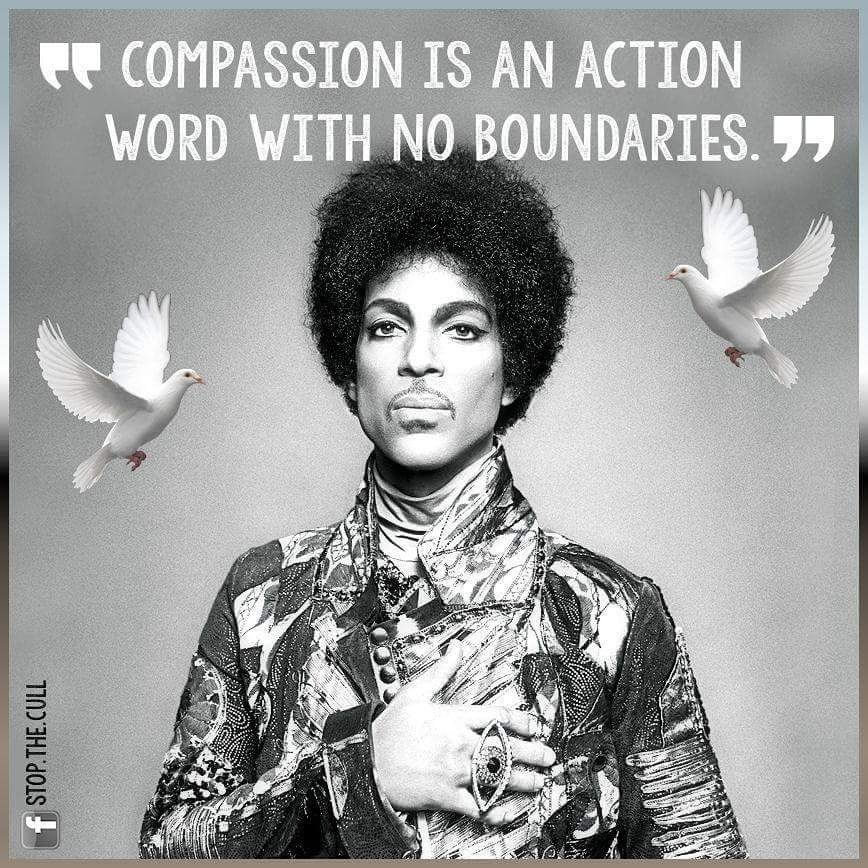 What a legend and compassionate person this world has lost.