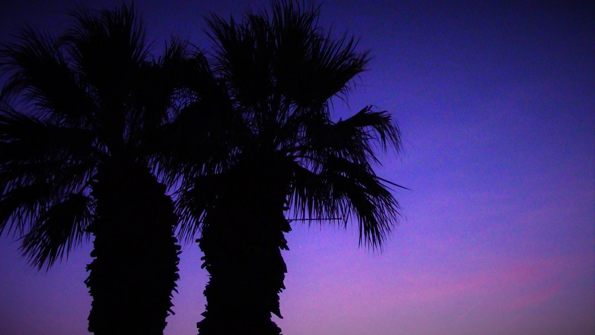 Purple sunset over AZ. #PrinceRIP