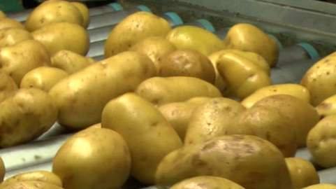 """Procura di Bologna: 23 indagati per """"la patata bollente"""""""