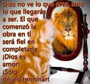 Lider Cristiano 1 A Twitteren Buenos Días Deja Que Dios Sea El