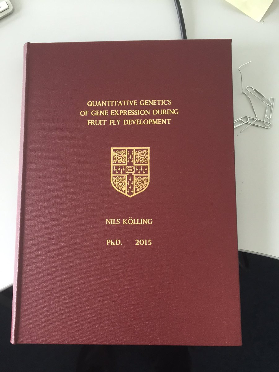 Daniel zerbino phd thesis