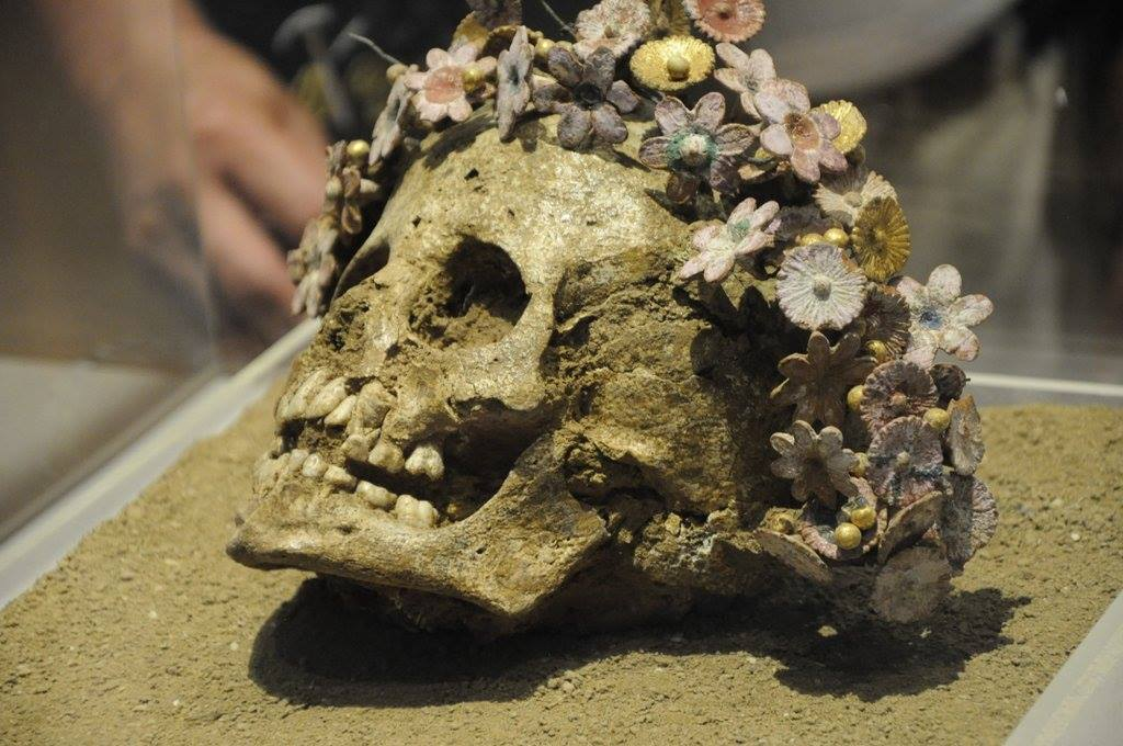 Skull of a young girl buried with a crown of ceramic flowers. Patras (found near my house), 300-400 BCE https://t.co/TlrmVZ2G0r