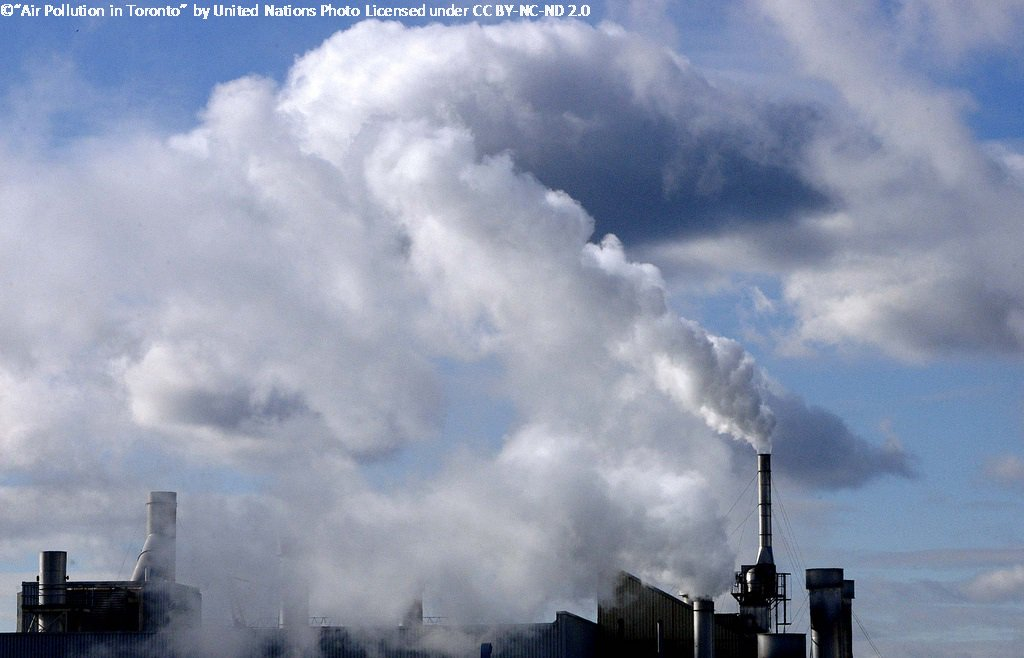 ap environmental science waste essay