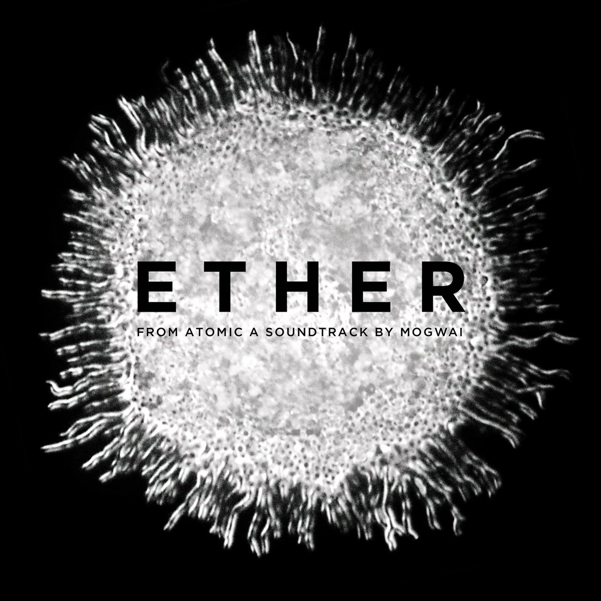 """""""Ether"""" by @mogwaiband is @eMusic Daily Download today! https://t.co/q4SwdI5q02 https://t.co/hV6hSLaoEO"""