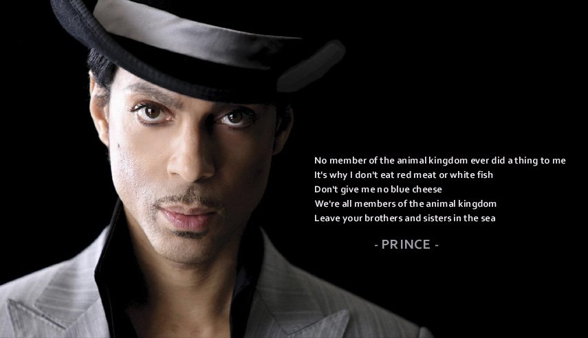 'No member of the animal kingdom ever did a thing to me. It's why I don't eat red meat or white fish' ~Prince #Vegan https://t.co/PamUW9IewF