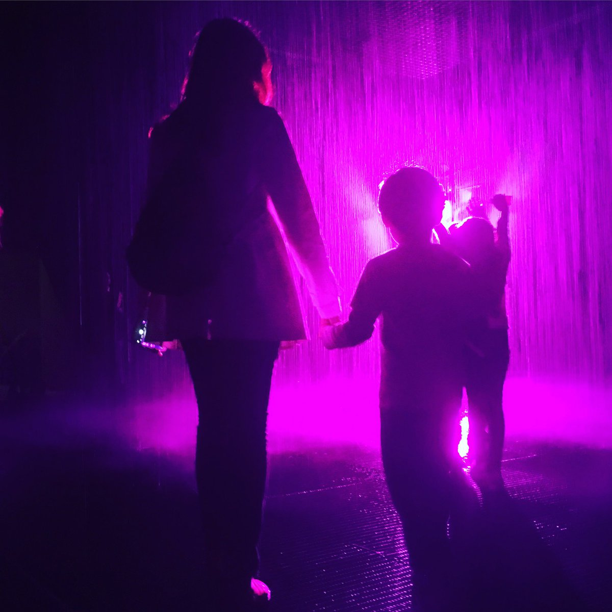#lacmamuseum with Gus.....#purplerain #rainroom  in honor of #prince https://t.co/Zznmkx0GH4