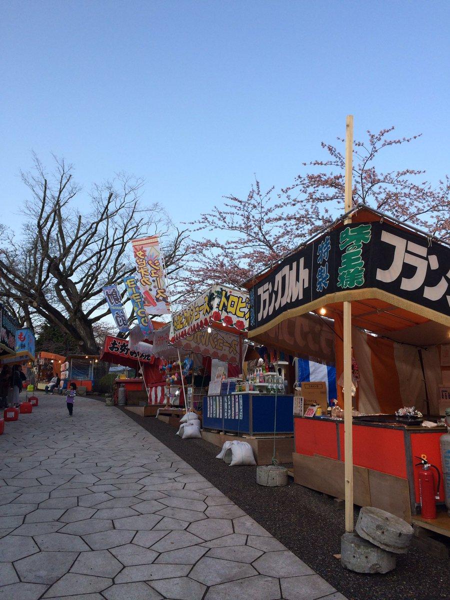 函館公園にも行ってきました。さくらちょっと咲いてた! https://t.co/a5azToegeN