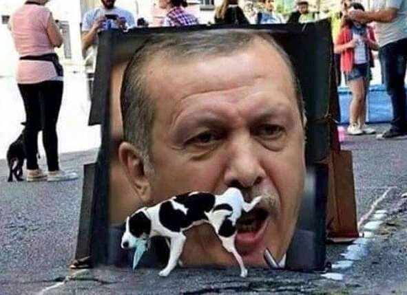 Image result for erdogan dog