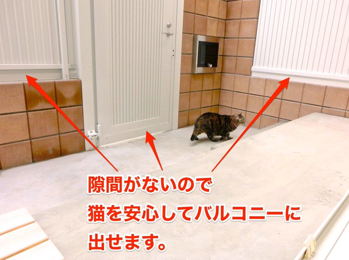 横浜初の猫専用新築賃貸、入居者と猫2匹募集中。102号室は猫を外に出せますよ!詳しくはHPを! https://t.co/CkiyVLoXmf  #猫専用 #猫可 #ペット可賃貸 https://t.co/1hoU63rALz