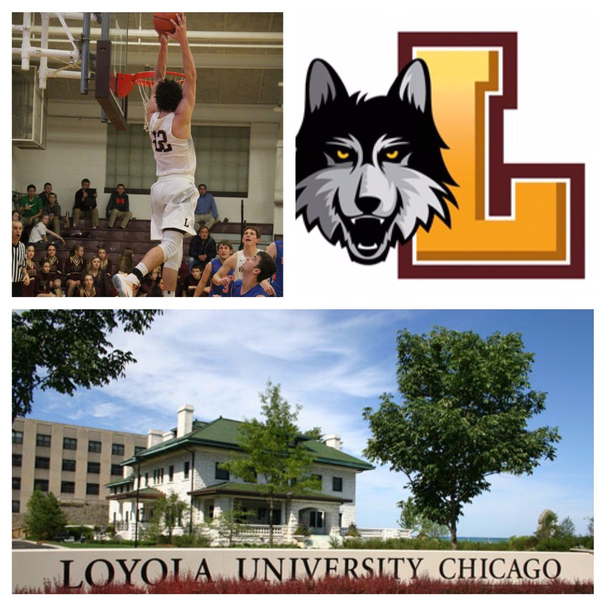 Will I get into the University of Chicago?