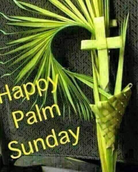 "lara on twitter: ""happy #palmsunday and i wish you a holy week na so"